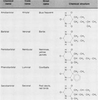 A chart of various barbiturate drugs and their chemical compositions.