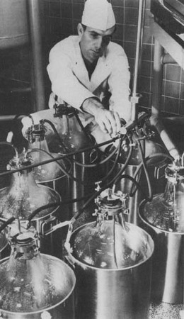 A man filters and subdivides streptomycin at the New Sterile Techniques Plant owned by Merck & Company.
